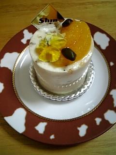 Shin Factoryのケーキ