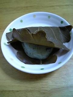 仙太郎のお菓子(4月編?)