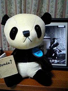 来た〜っ、Yonda<br />  ?パンダ!