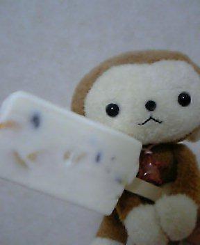 白クマって?